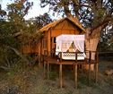 Baines Camp, Okavango Delta Accommodation