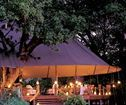 Stanley's Camp, Okavango Delta Accommodation